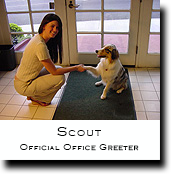 Scout, V.I.P. Office Greeter